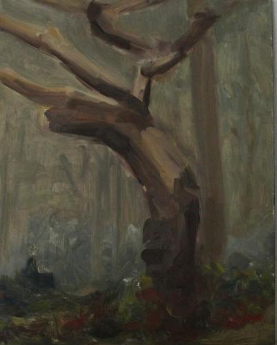 Boom in het bos. Olieverf op paneel. Oktober 2017. 20 x 25