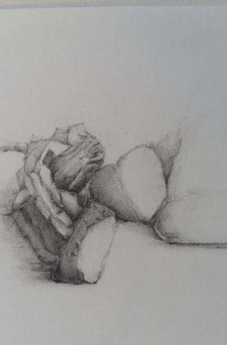 Abstractie van stilleven, potlood op papier, 15 x 20 cm, € 125,00