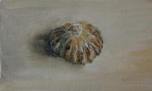 Schelp, olieverf op canvas, 10 x 9 cm, 2020, € 95,00